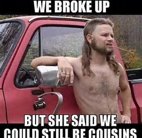 we broke up but stil cousins